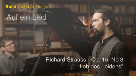 Thumbnail Lob des Leidens